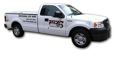 Izzy's Professional Pest Mgmt - Homestead Business Directory